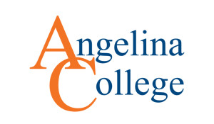 AC-Logo-Orange-Blue-WEB